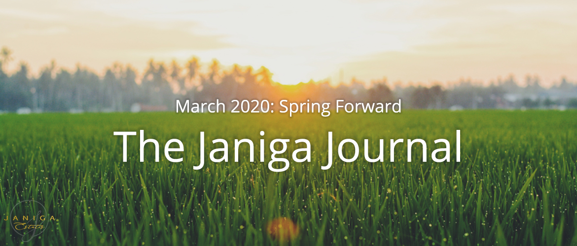 March 2020: Spring Forward
