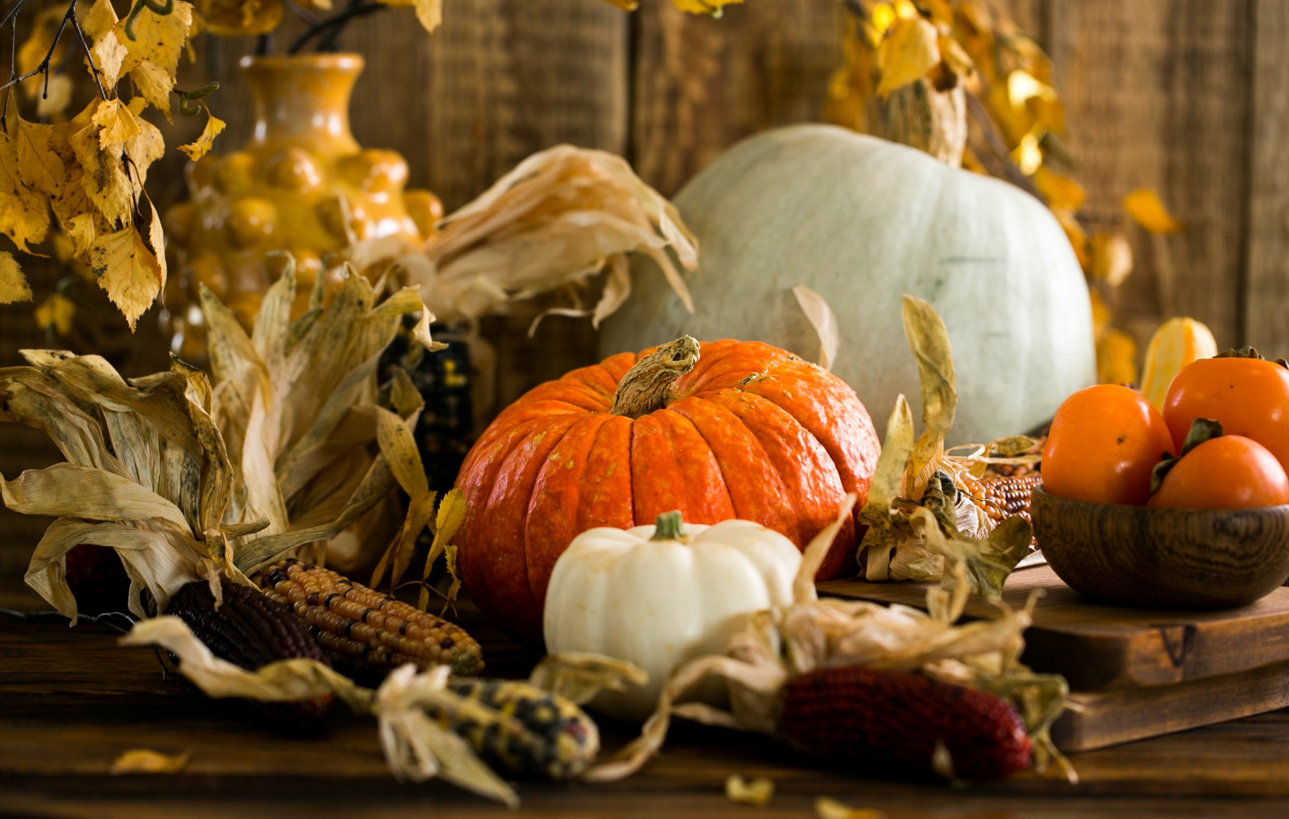 Orange and White Pumpkins with fall corn and yellow vases.