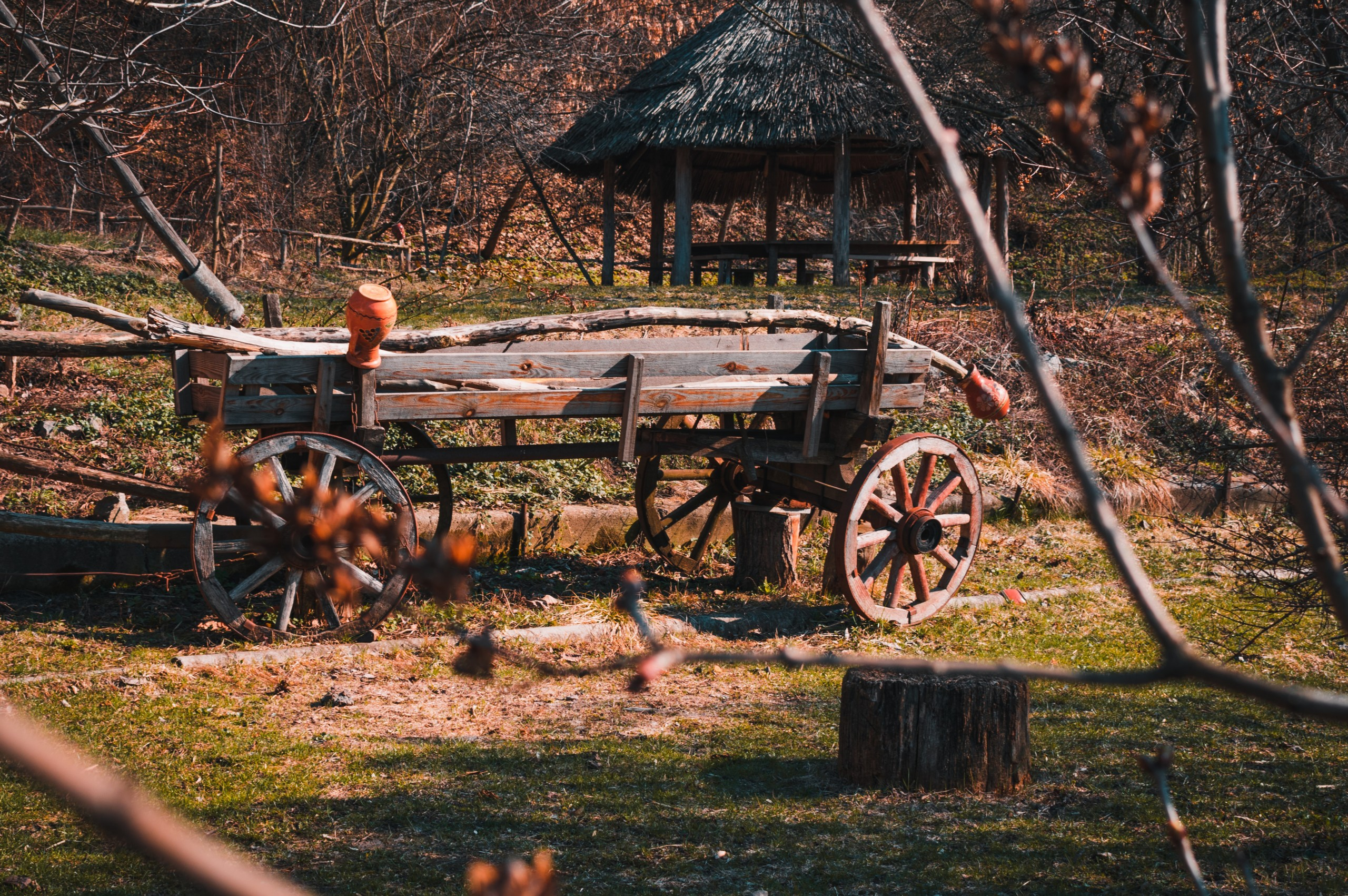 Wagon in wooded setting.