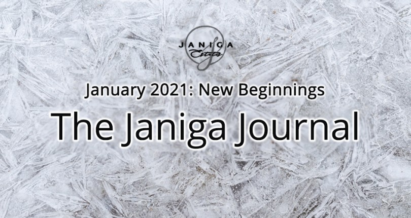 January 2021: New Beginnings