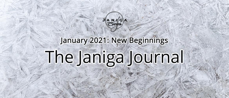 January 2021: New Beginnings